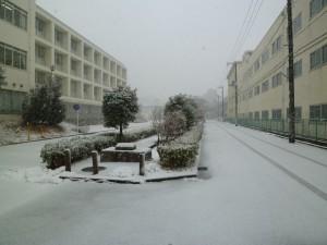 20140214雪景色