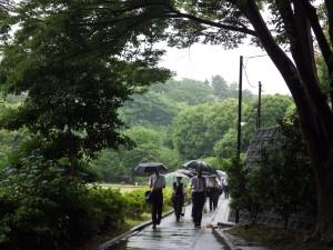 20150603朝から雨①